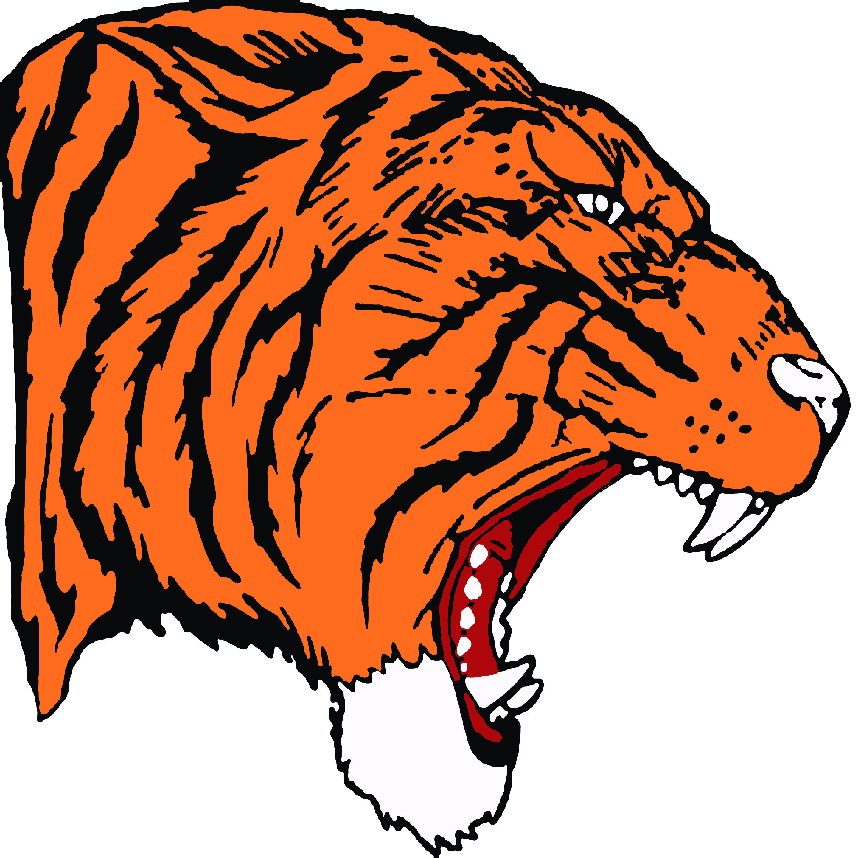 Hollister High School mascot.